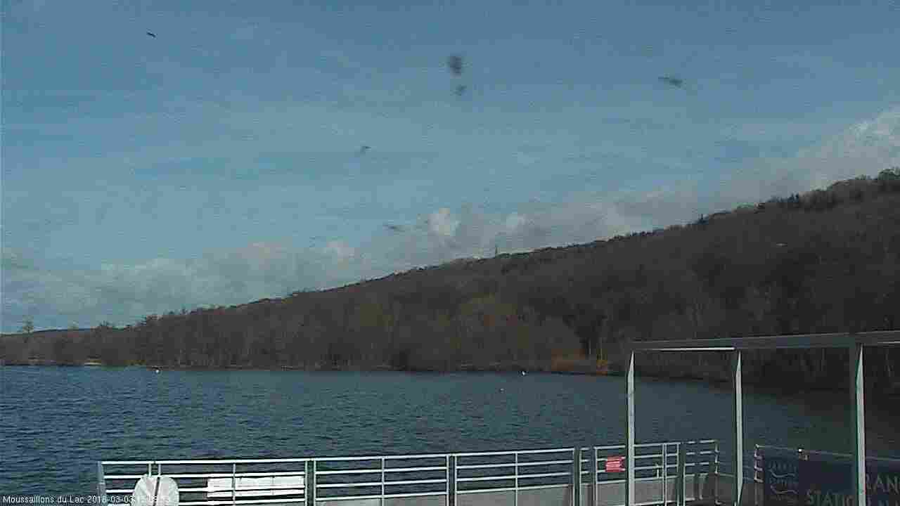 Webcam Cany-Barville